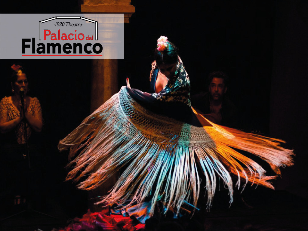 Palacio del Flamenco: Flamenco y Olé from 35 €