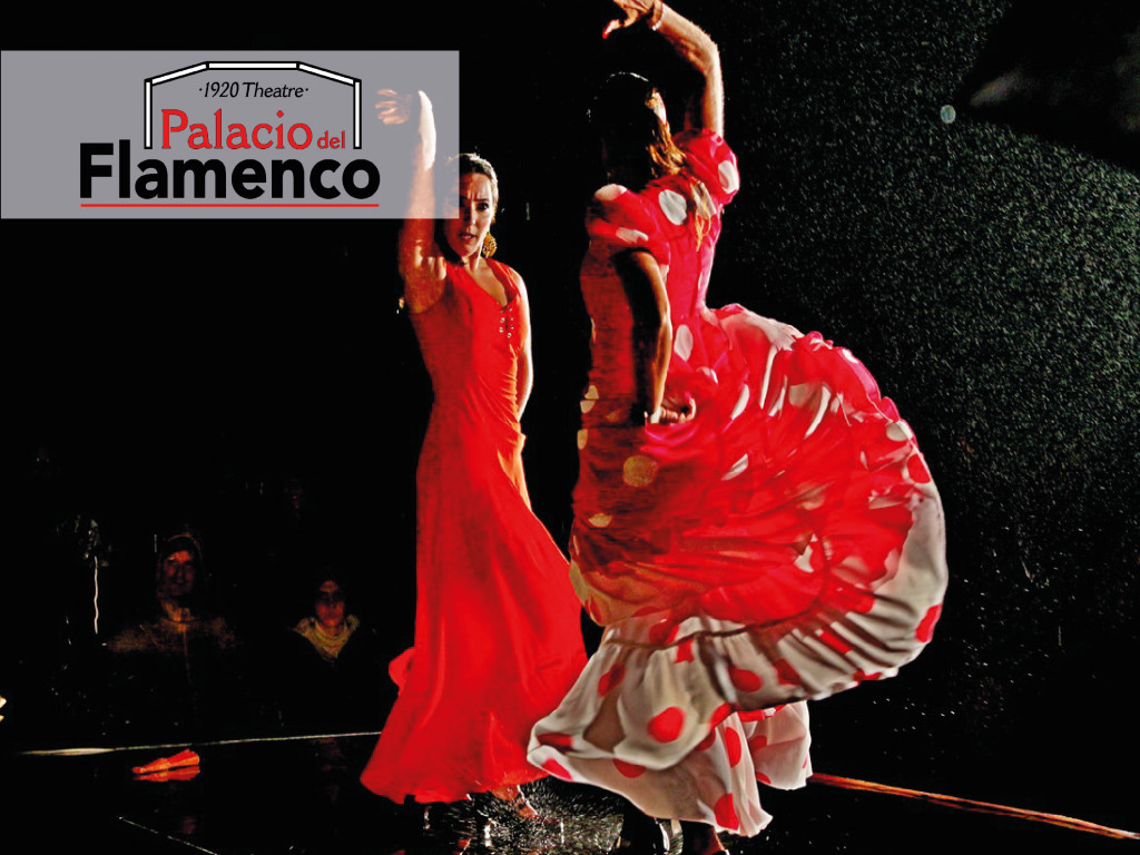 Palacio del Flamenco: Flamenco Gipsy from 35 €