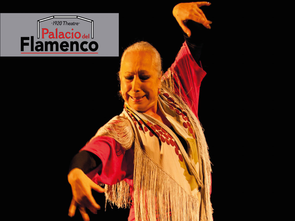 Palacio del Flamenco: Flamenco Pasión from 35 €