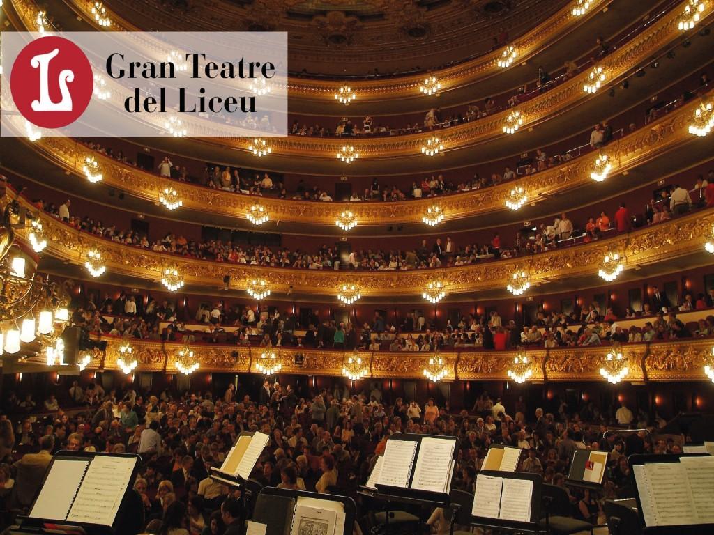 Prestige Visit to the Liceu Opera16€