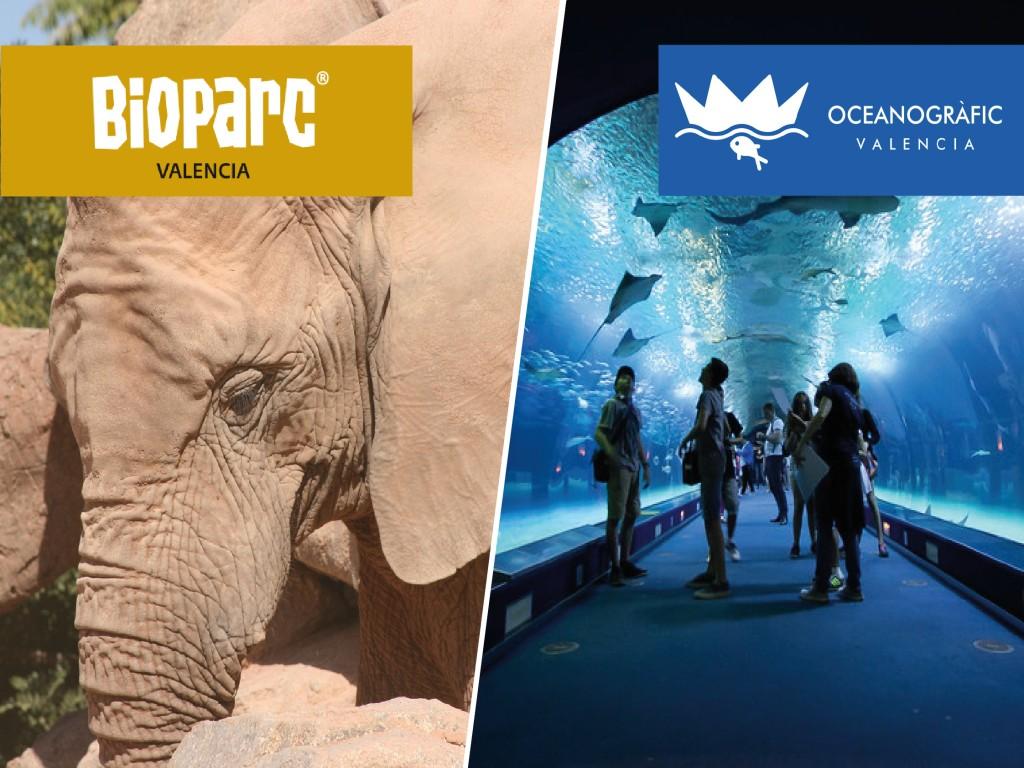 Ticket Combinado Bioparc + Oceanográfic
