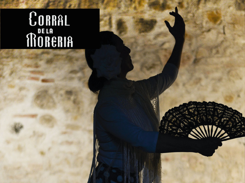 Espectáculo flamenco + Copa