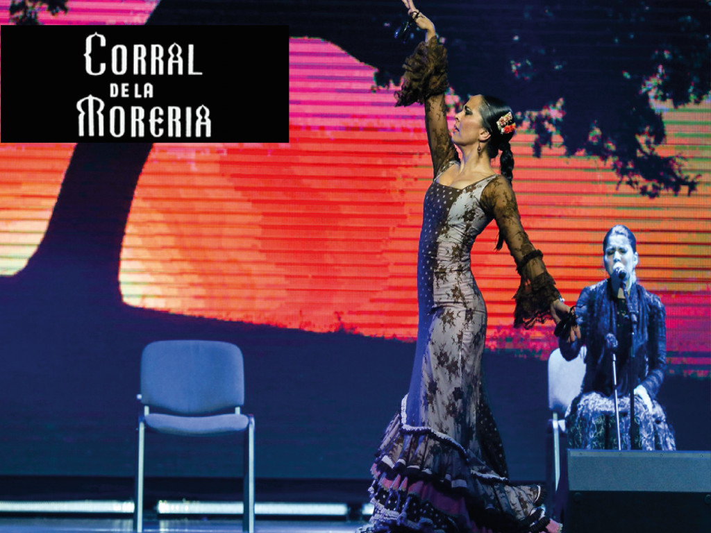 Espectáculo flamenco + Cena