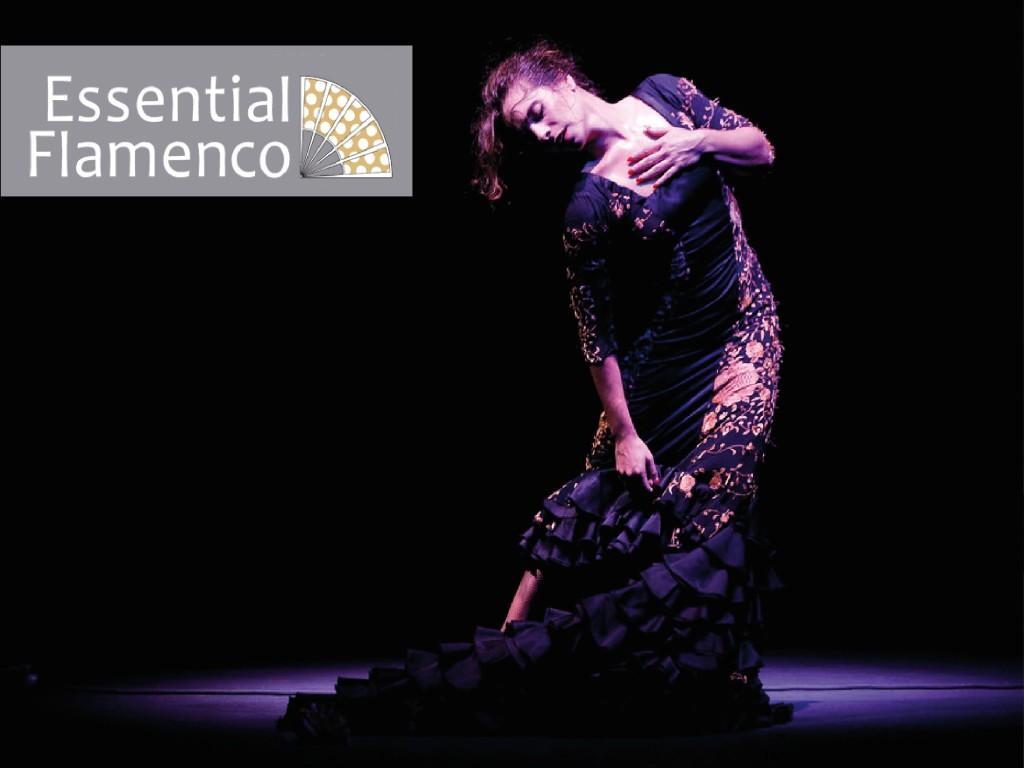 <p>Show in Essential Flamenco</p>