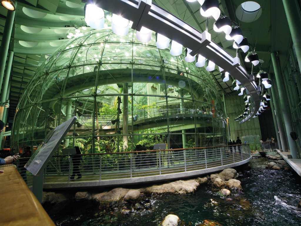 California Academy of Science General Ticket