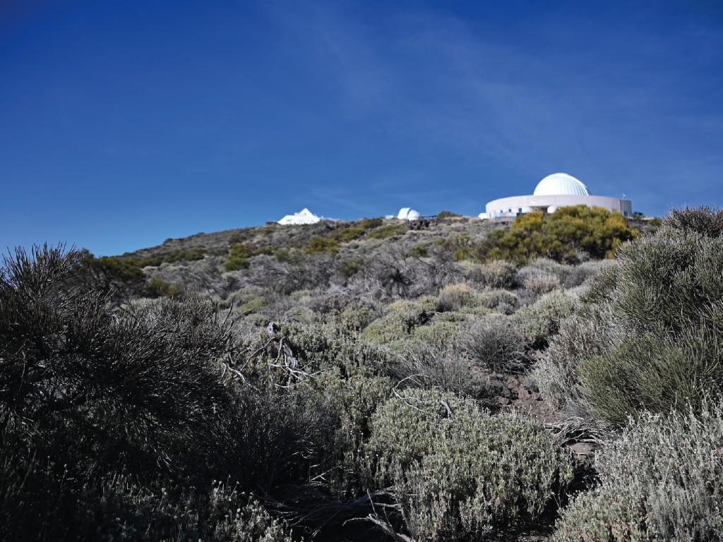 Visita guiada diurna al Observatorio Teide - DEU