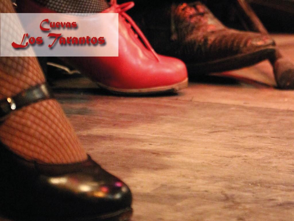 Espectáculo + copa + visita Albaicín + transporte