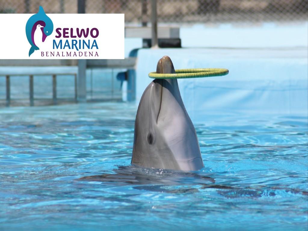 Promoción Apertura Selwo Marina -40%